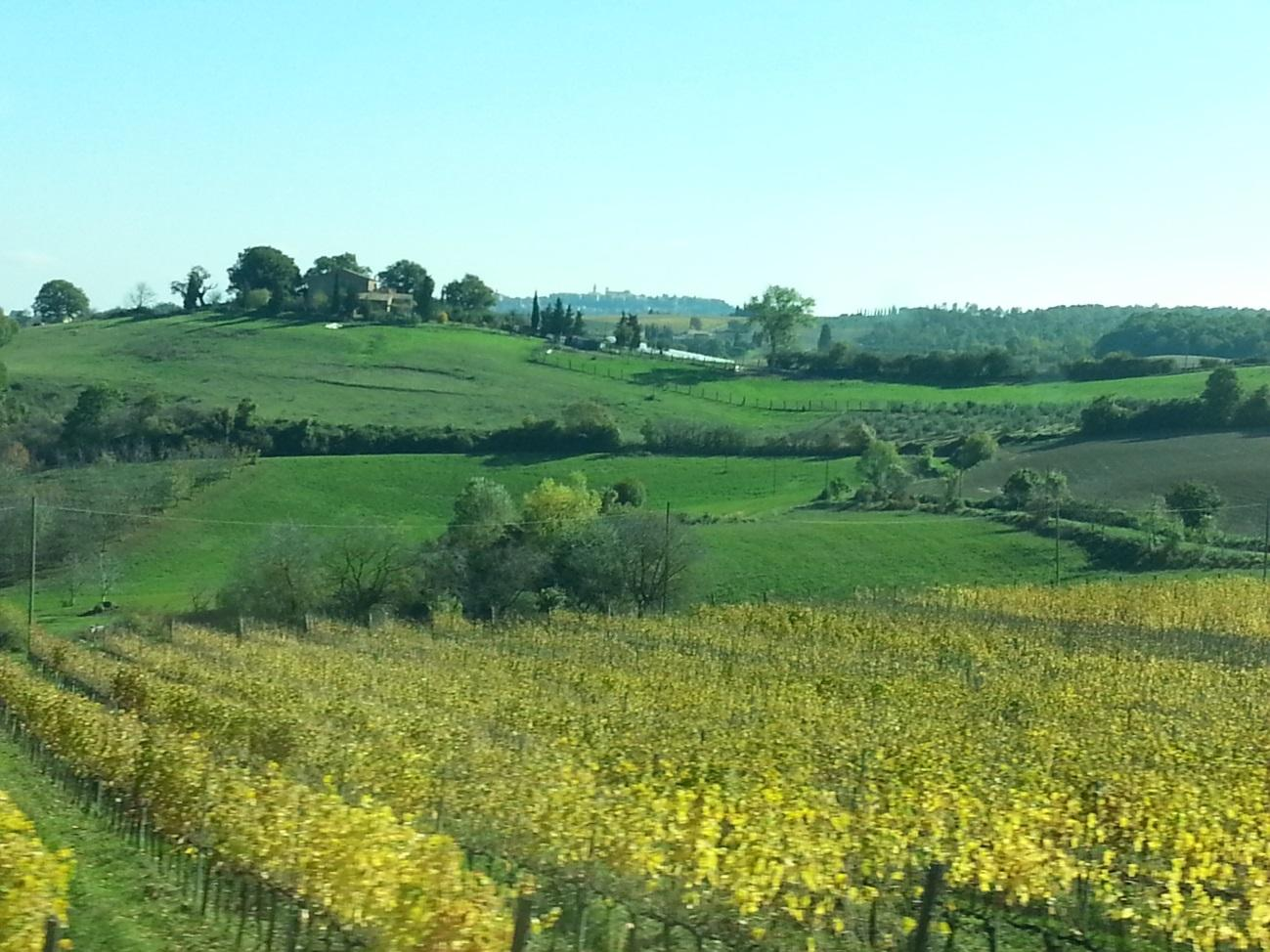 C:\Users\Gonzalo\Desktop\Documentos\Fotografías\La Toscana\Móvil\20161028_115857.jpg