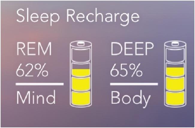 Sleep Recharge S+ Res Med Welltory