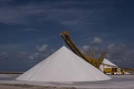 Bonaire N.A., Sea Salt production (Charles W Guthrie)