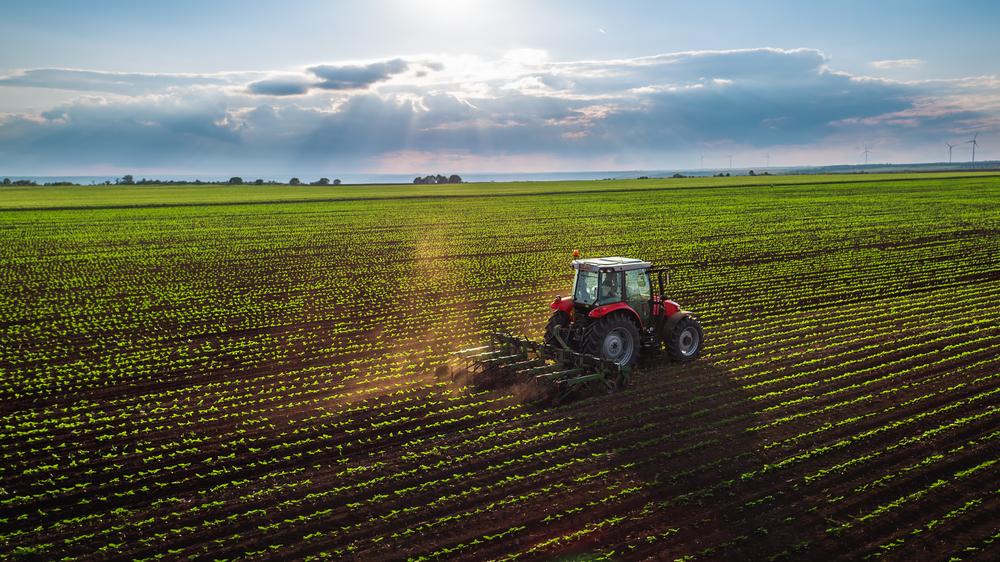 Proprietários rurais devem declarar ITR até o dia 30 de setembro para não pagar multa e juros. (Fonte: Shutterstock)