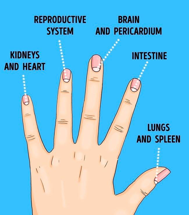 fingers nail as a reflection of different diseases