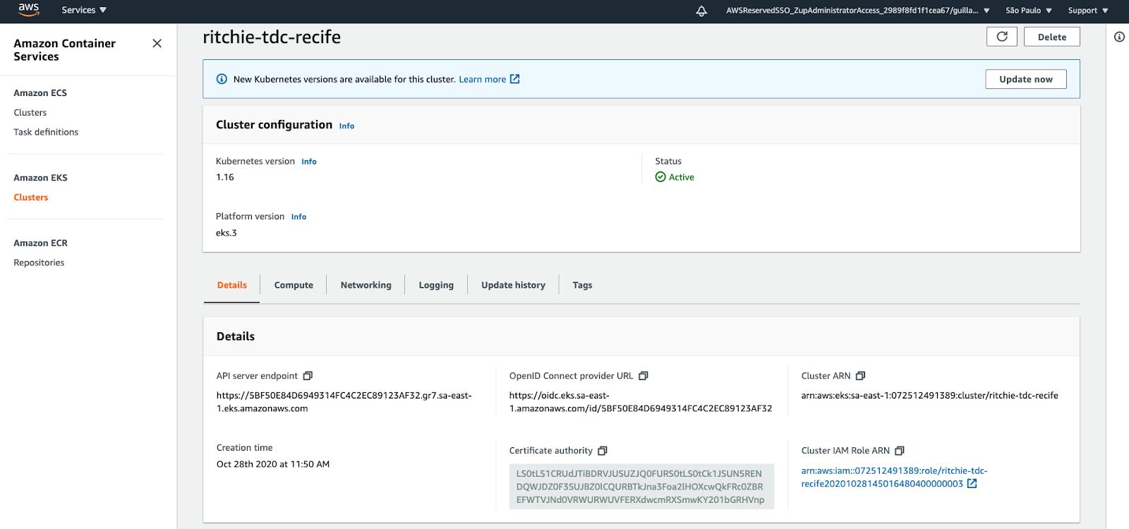 Evidência do cluster EKS que foi configurado na AWS após a execução do pipeline do CircleCI.