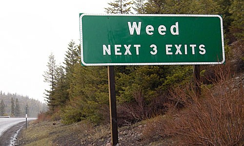 weed town