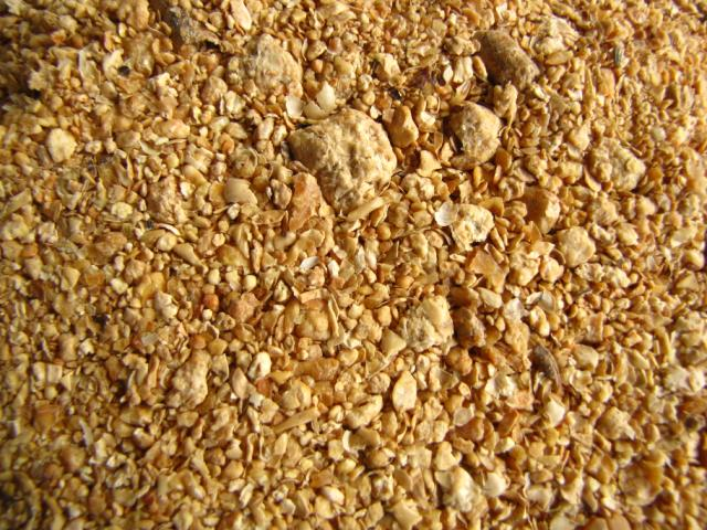 Image result for soybean meal pet food