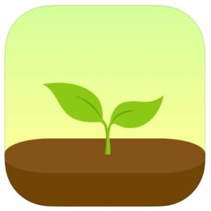 番茄鐘APP推薦─Forest 專注森林