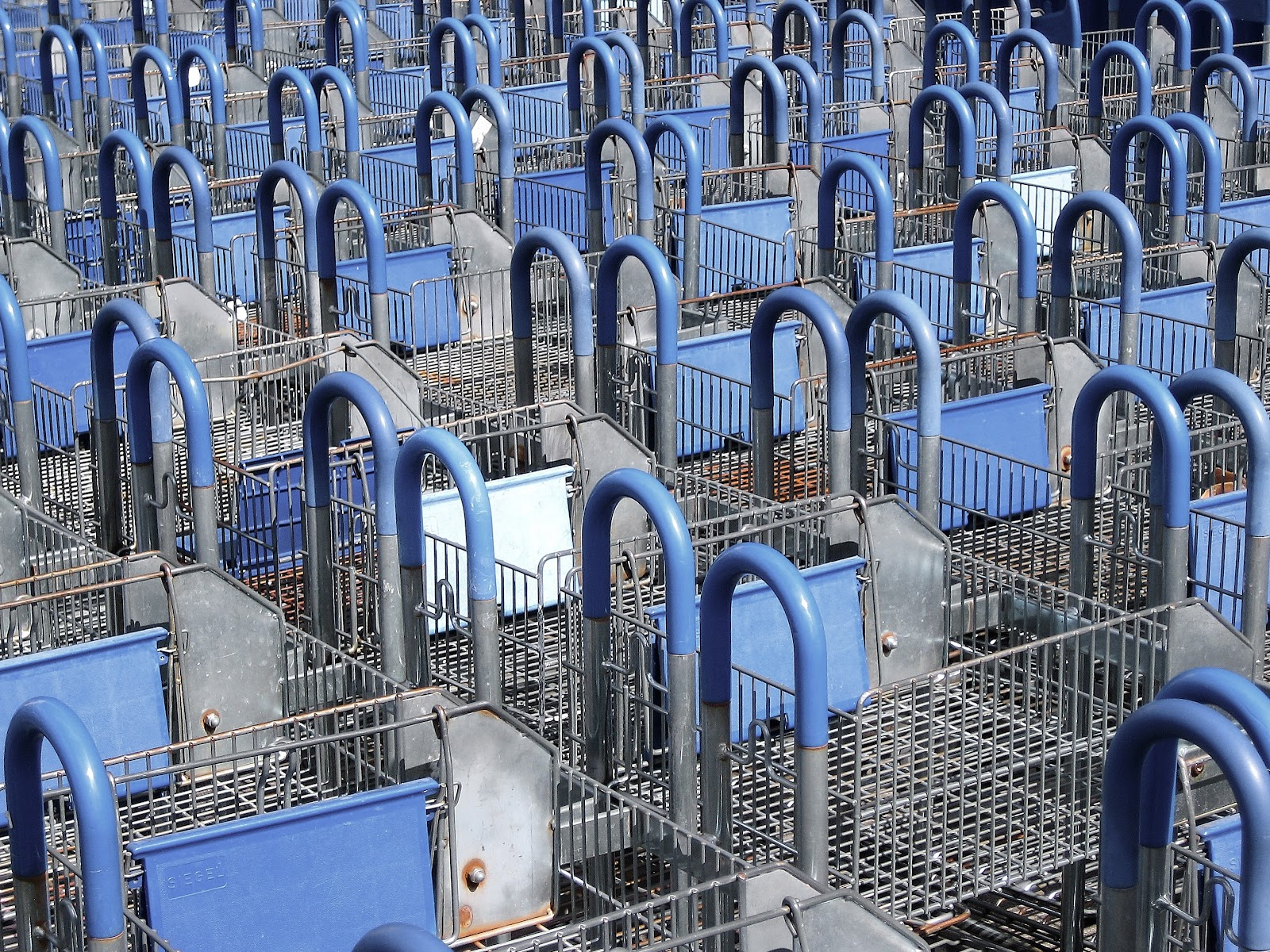 Many empty shopping carts symbolizing potential e-commerce purchases