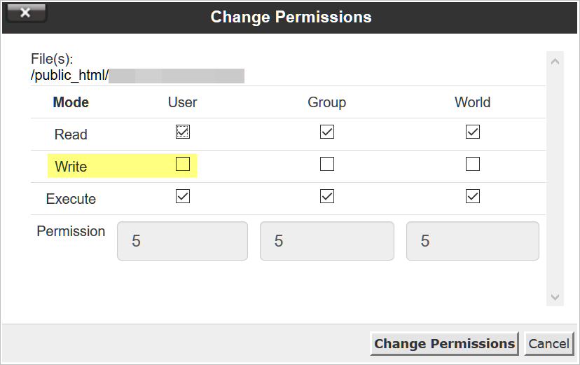 write permissions common WordPress problems