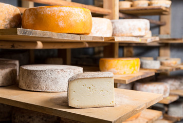 find-cheese-cheesemaker