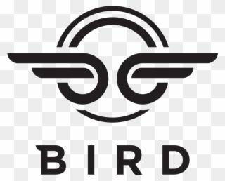 bird company.png