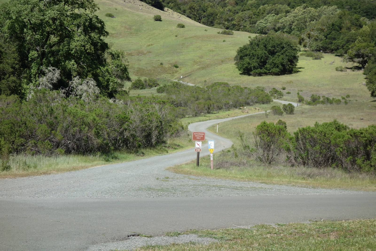 Climb Bald Mountain by bike - sign and gravel section