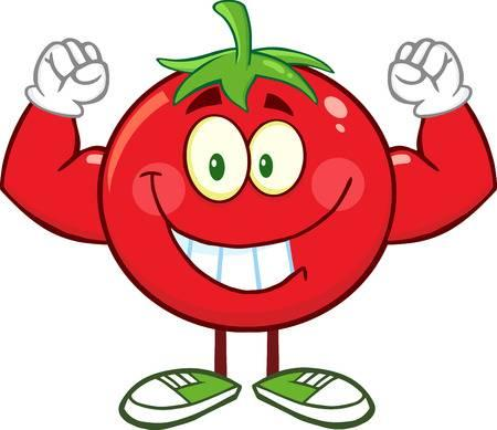 Strong Tomato Cartoon Mascot Character Flexing. Illustration Isolated On White Stock Vector - 36141809