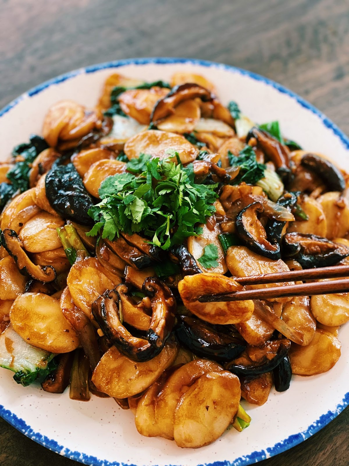 Fried Rice Cakes
