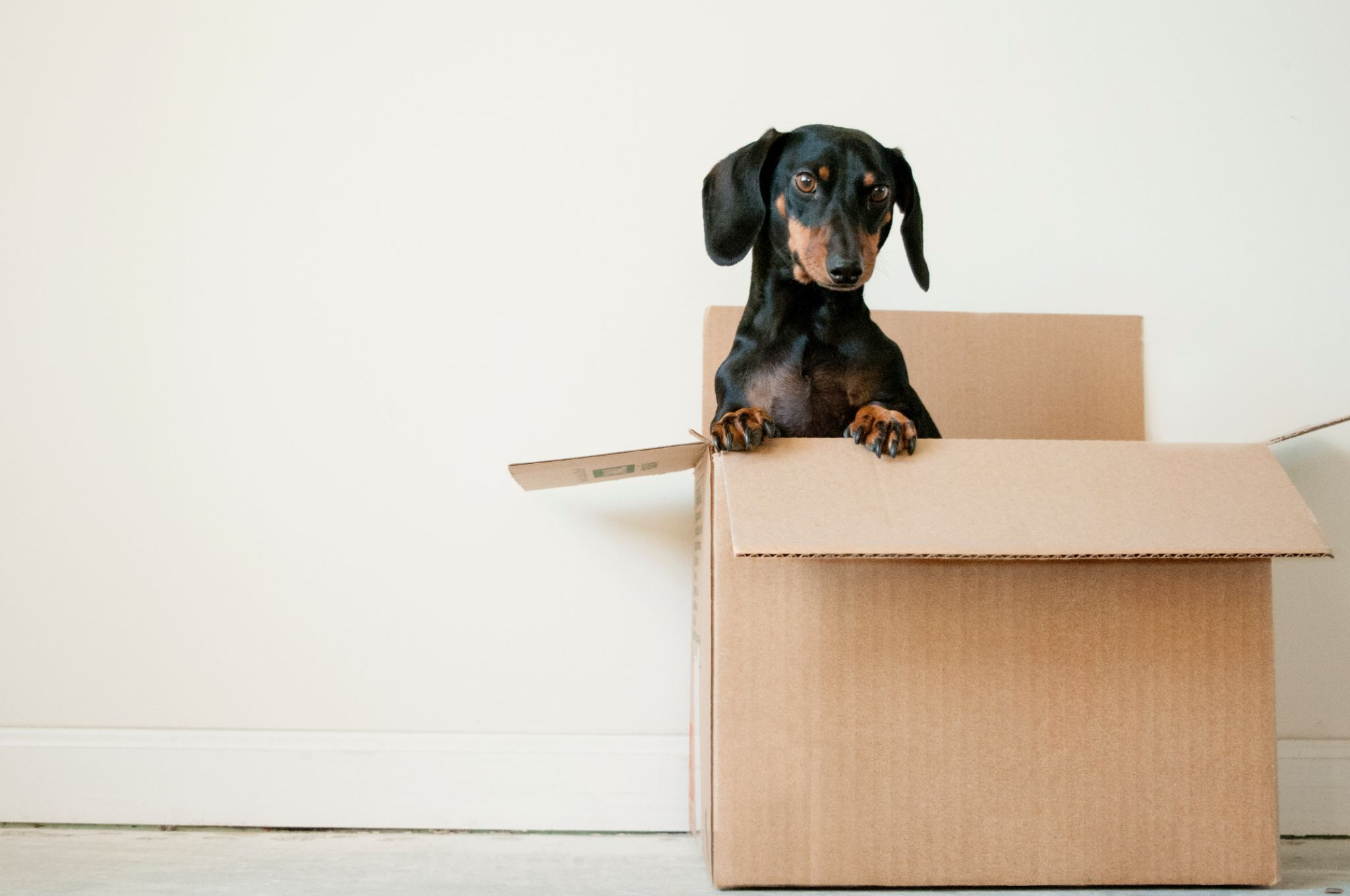 moving tips - boxes for packing