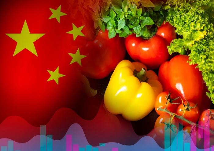 Nos próximos anos, a China ainda deve ser o maior destino das exportações mundiais. (Fonte: Shutterstock)importação agricultura chinesa