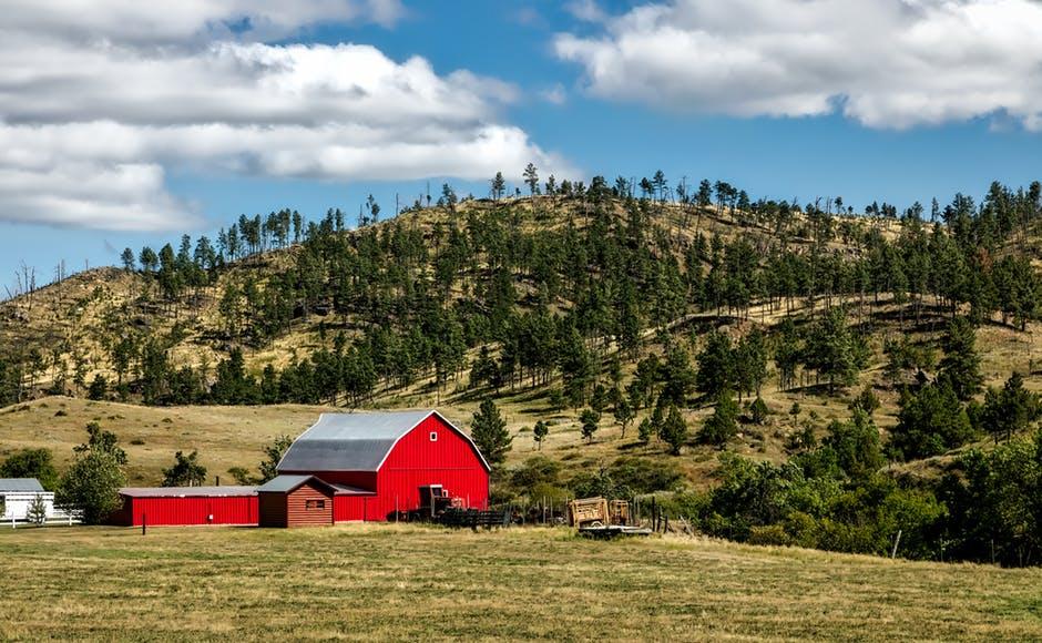 Ranch.jpeg