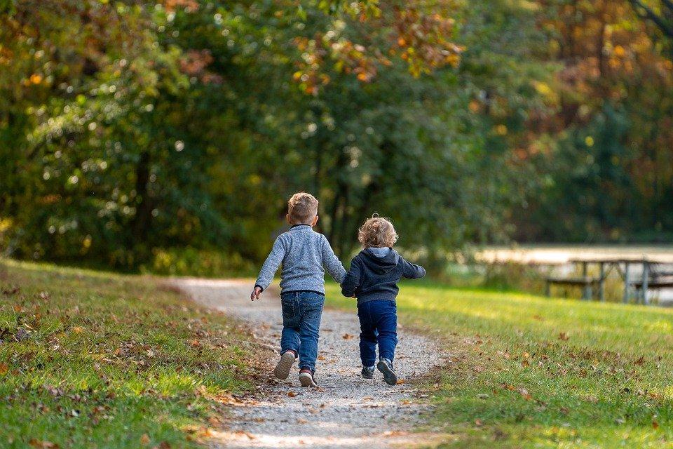 Meninos, Crianças, Caminho, Trilha, Parque, Irmãos
