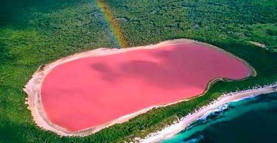 Il lago rosa di Hillier