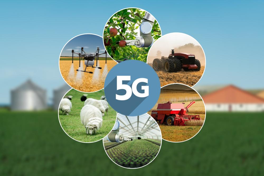 Implementação da conexão 5G favorece uma automação completa na agropecuária. (Fonte: Shutterstock/Scharfsinn/Reprodução)