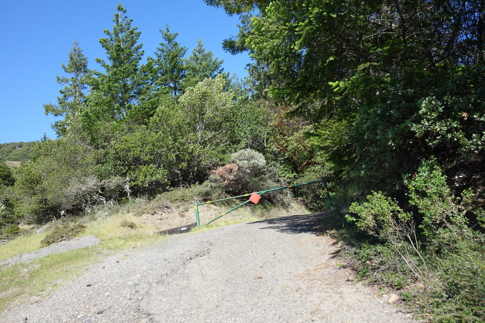 Climbing Bald Mountain by bike - gate at end of gravel section