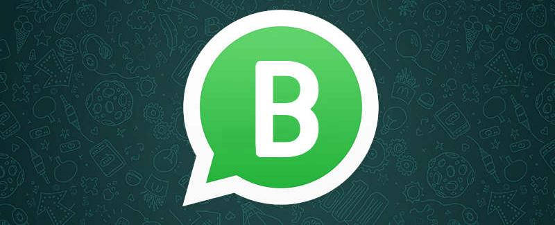 WhatsApp Business - frases de vendas