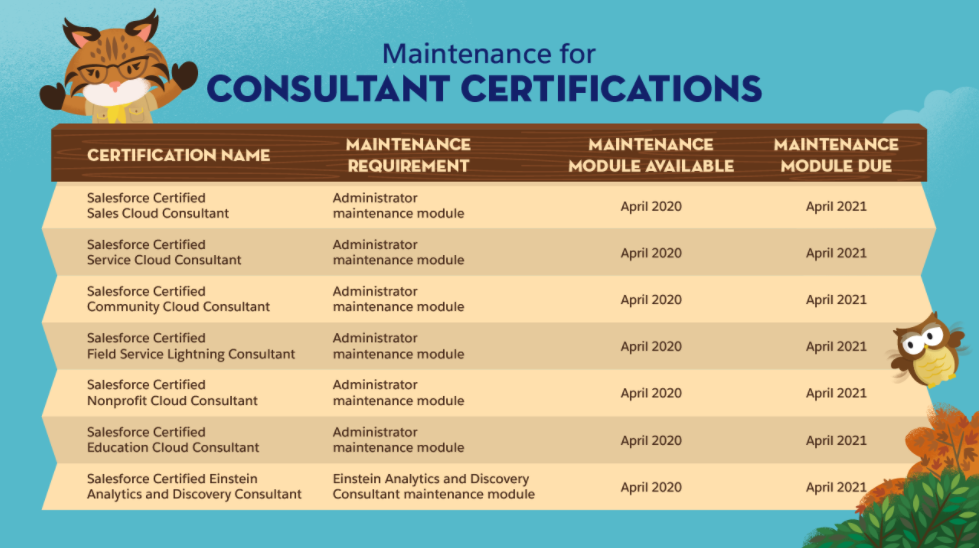 SalesForce Consultant Certification