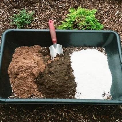 Substrato para cultivo indoor de plantas