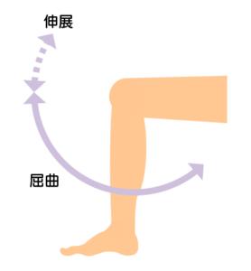 ひざの可動域