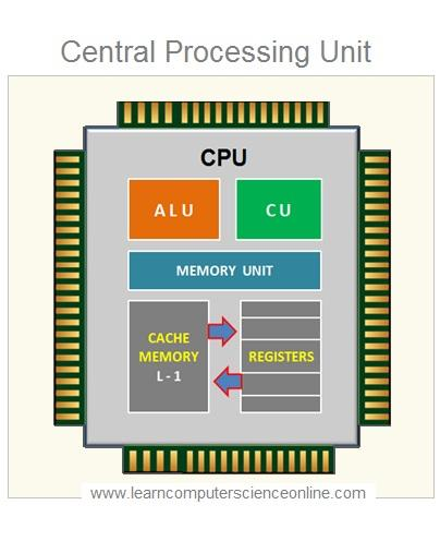 Central Processing Unit | What Is a Computer Processor ...
