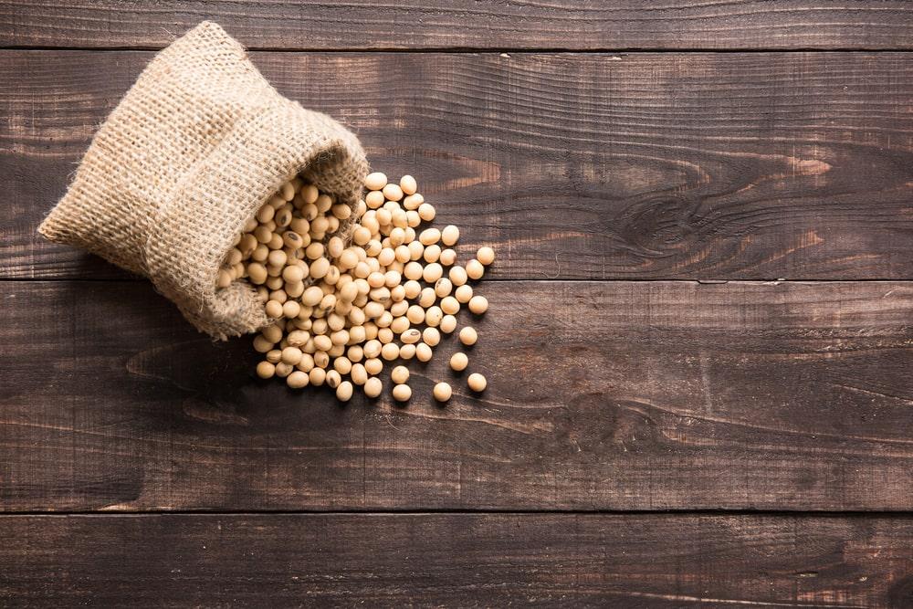 A soja perdeu a posição de produto agropecuário mais exportado em janeiro de 2021. (Fonte: Shutterstock/Bon Appetit/Reprodução)