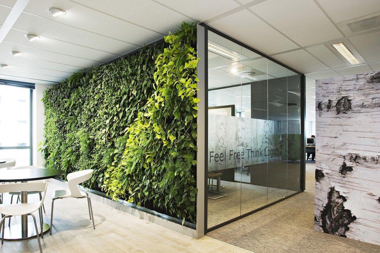 Sơn hiệu ứng Waldo-Văn phòng thiết kế phong cách Eco
