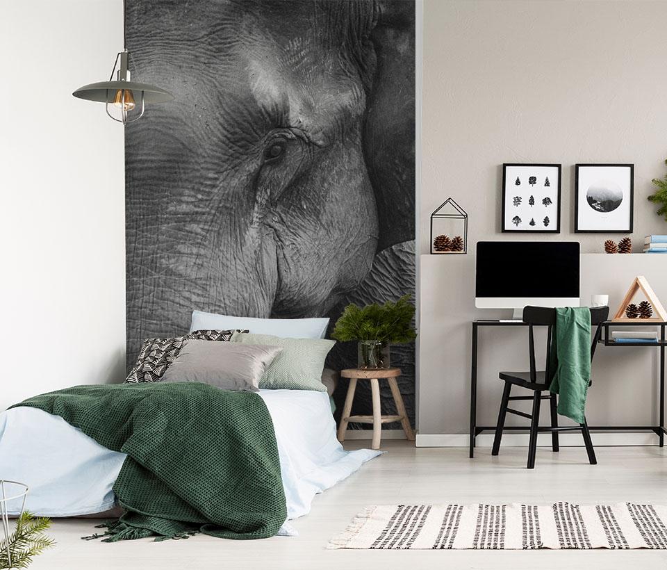 Фотообои животные в интерьере на стене