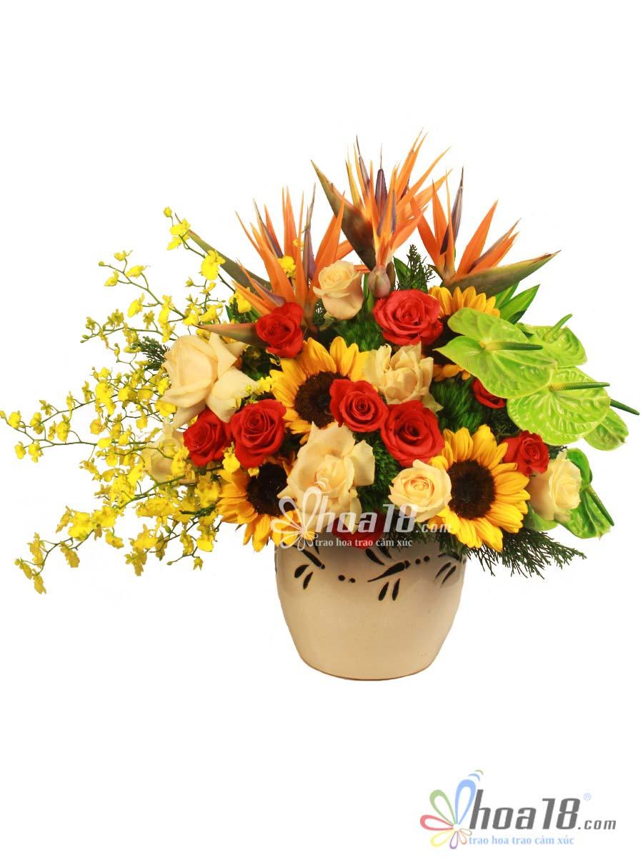 hoa đẹp tặng ngày thầy thuốc