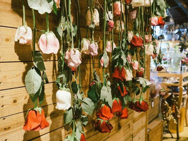乾燥花製作方法-倒掛風乾法
