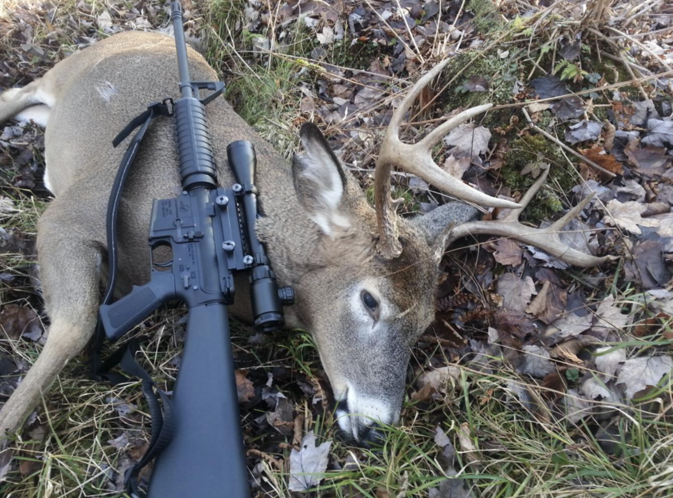 300 blk hunted deer