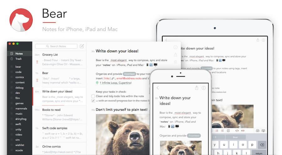 приложения для заметок - bear