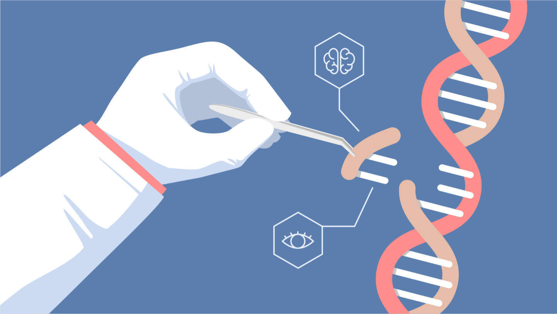 Image result for crispr gene editing