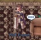 woe expert.png
