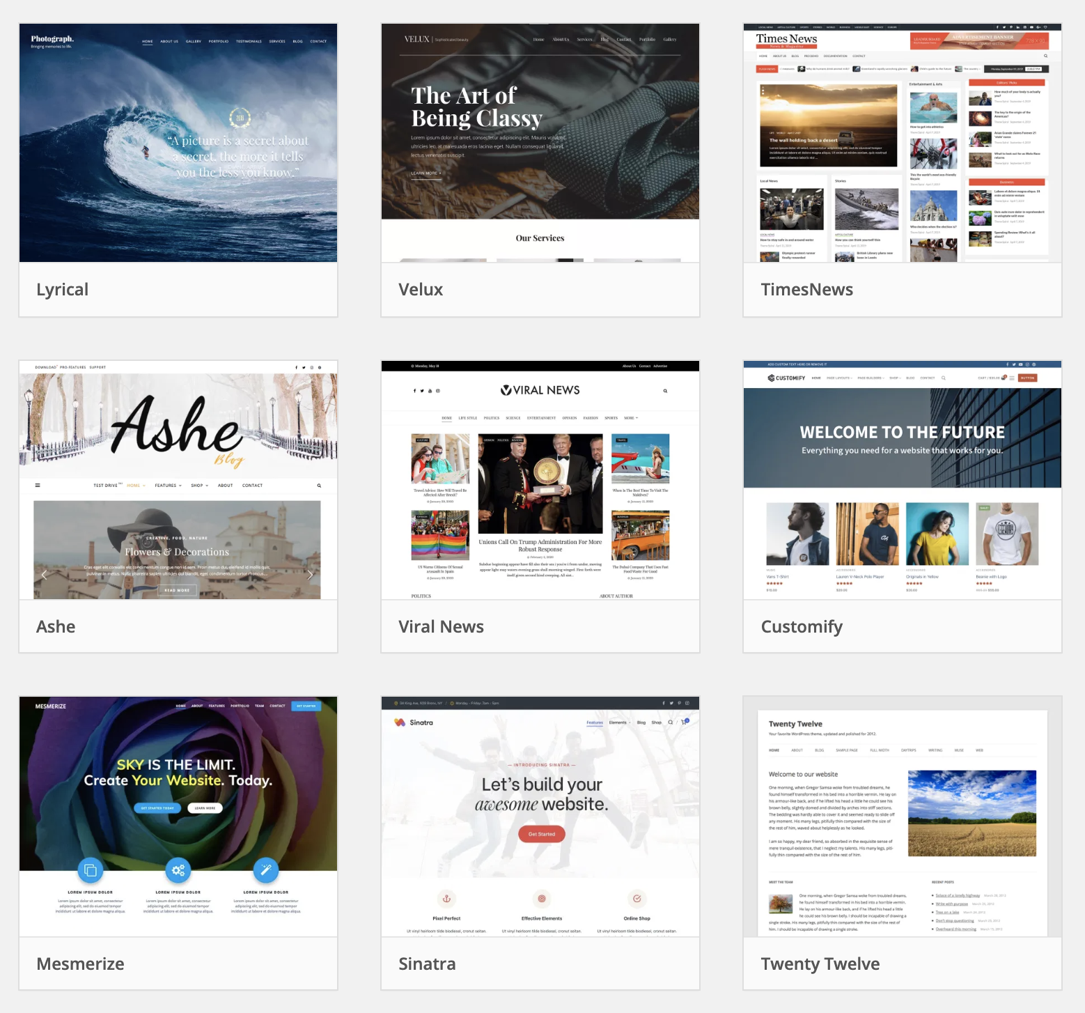 Examples of WordPress themes for your blog