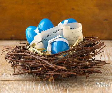 Blue Eggs in Stick Nest