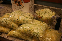 grated squash in baggies