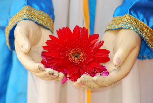 A Gift To Shri Balasaheb Thackeray From A Barefeet Blogger Of Mumbai by firoze shakir photographerno1