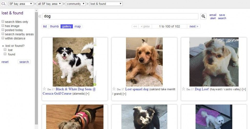 Craigslist Lost And Found Pets - petfinder