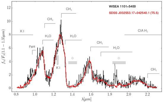 WISEA-1101+5400 spectrum