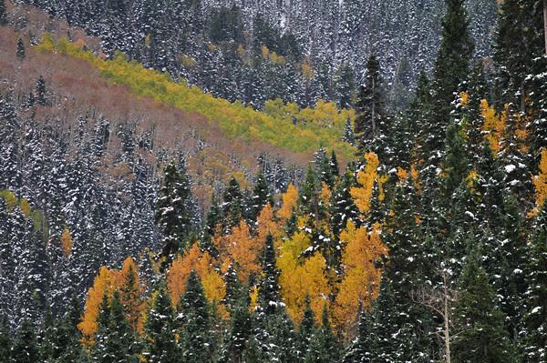 first heavy snowfall of the season