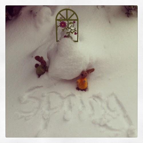 Shropshire Spring