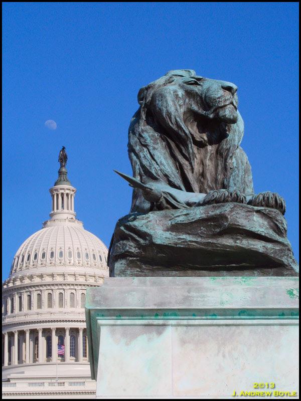 Capitol Lion