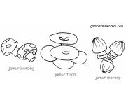 Sayuran Gambar Mewarnai