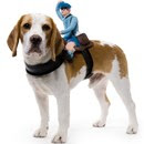 Mailman Dog Rider Pet Costume