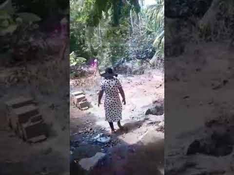 UNP retira esquema de seguridad a víctima del paramilitarismo en Santa Marta