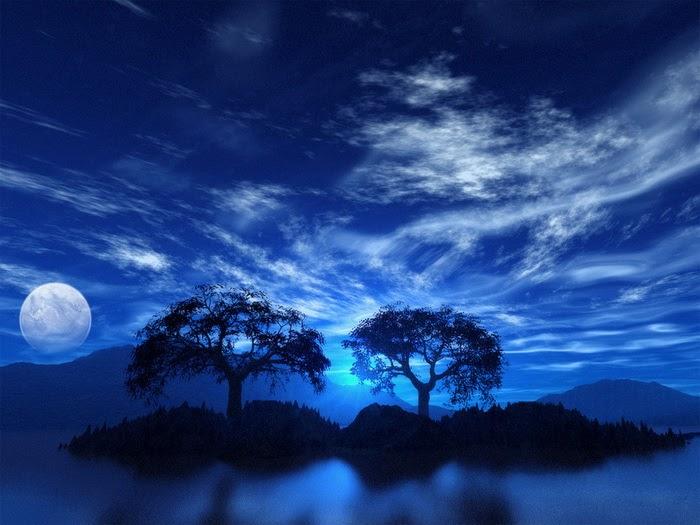 20 fantasy colorful tree - photo #6